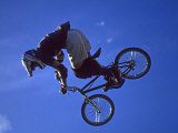 Bmx Cyclist Flys over the Vert Reprodukcja zdjęcia