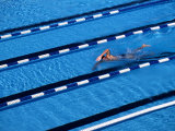 Male Swimmer Training Doing Laps in the Pool Photographic Print