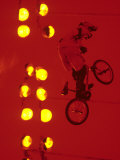 Bmx Cyclist Fotografisk trykk av Paul Sutton