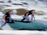 Two Man Bobsled Team Pushing Off at the Start, Lake Placid, New York, USA Photographic Print by Paul Sutton