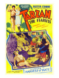Tarzan the Fearless, Buster Crabbe, Julie Bishop, 1933 Posters