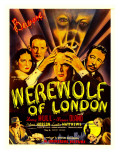 Werewolf of London, Valerie Hobson, Lester Matthews, Warren Hull, Warner Oland, 1935 Posters