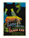 The Black Cat, Boris Karloff, Harry Cording, Jacqueline Wells, Bela Lugosi, 1934 Pósters