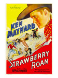 Strawberry Roan, 1933 Posters