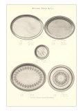Serving Platters Print