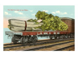 Giant Celery on Flatbed Art