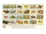 French Grain Chart Kunstdrucke