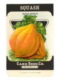 Squash Seed Packet Posters