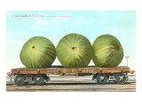 Giant Figs on Flatbed Print