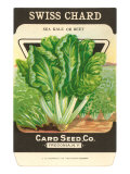 Swiss Chard Seed Packet Print