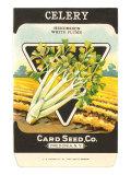 Celery Seed Packet Print