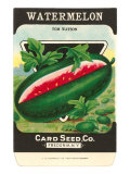 Watermelon Seed Packet Prints