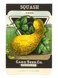 Summer Squash Seed Packet Prints