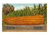 Giant Corn on Flatbed Poster