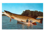Giant Pike in Boat Poster