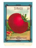 Tomato Seed Packet Poster