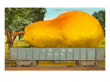 Giant Pear in Rail Car Prints
