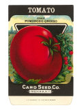 Tomato Seed Packet Prints