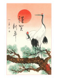 Red-Crowned Cranes Affiche