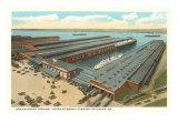 Steamship Terminal, Savannah, Georgia Posters