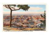 Yavapai, Grand Canyon Posters