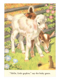 Lambs and Gopher Art Print