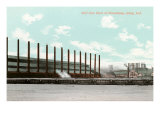 Mill Site, Gary, Indiana Prints