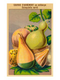 French Gourd Selection Seed Packet Print