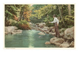 Trout Fishing in Creek Poster