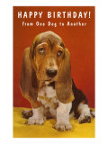 Happy Birthday, Basset Hound Prints