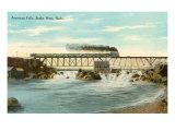 American Falls, Snake River, Idaho Posters