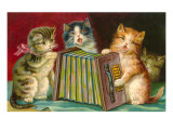 Kittens Playing Concertina Posters