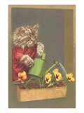 Dressed Kitten Watering Pansies Poster