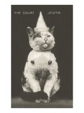 Cat with Pointed Hat, Court Jester Poster