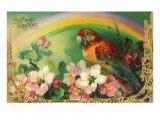 Auguri di buon compleanno, Pappagallo e rose Poster