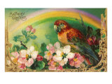 Birthday Greetings, Parrot and Roses Posters