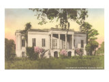 Hermitage Plantation, Savannah, Georgia Prints