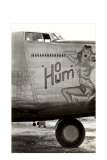 Nose Art, Ho Hum, Pin-Up Photo