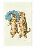 Cats with Umbrella Prints