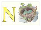 N, Nest Prints