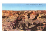 Yavapai Point, Grand Canyon Posters