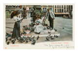 Pigeons in St. Mark's Square, Venice, Italy Poster