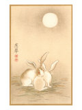 Rabbits and the Moon Plakater