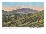 Fujiyama from Jikkoku Pass Prints