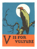 V is for Vulture Reproduction giclée Premium