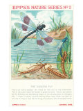Epps's Nature Series, Dragon Fly Art