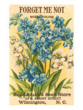 Forget Me Not Seed Packet Poster