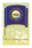 New Hampshire Flag Art Print