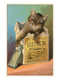 Cat with Eclectric Oil Photo