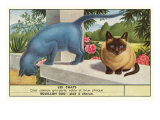 Exotic Cats Poster